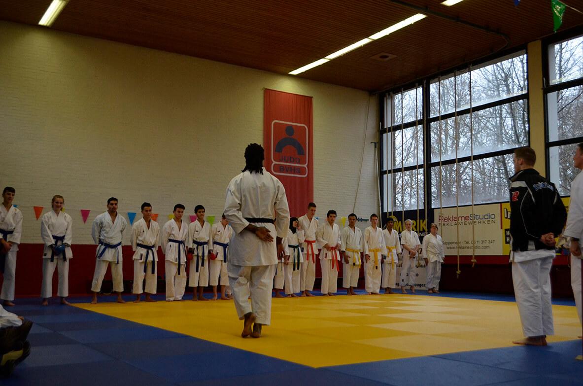 band kleuren karate